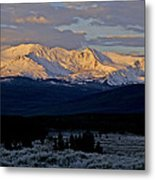 Frost Settles In Metal Print