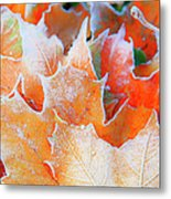 Frost Touched Metal Print