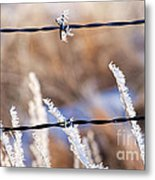 Frosted Fence Line Metal Print
