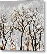 Frosted Forest Metal Print