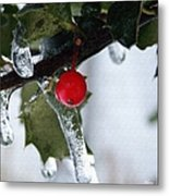Frosted Holly Metal Print