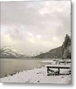 Frosted Morning Metal Print
