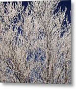 Frosted Wires Metal Print