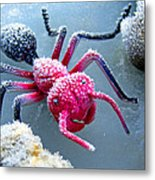 Frosty Ant In Winter Metal Print