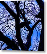 Frosty Blue Abstract Metal Print