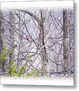 Frosty Morning Song Metal Print