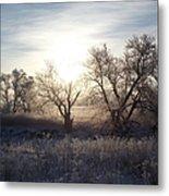 Frosty Rise Metal Print