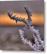 Frosty The Twig  Metal Print