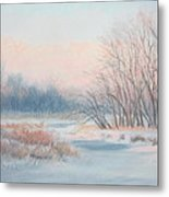 Frosty Toes At Catfish Corner Metal Print