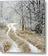 Frosty Trail 2 Metal Print