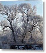 Frosty Trees 4 Metal Print