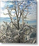 Frozen Backlight Metal Print