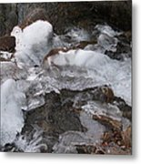 Frozen Beauty Metal Print