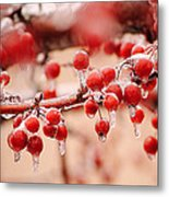 Frozen Berries Metal Print