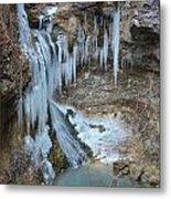 Frozen Eden Metal Print
