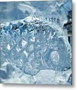 Frozen Fish Of The Northern Forests Metal Print