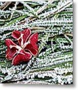 Frozen Flower Metal Print