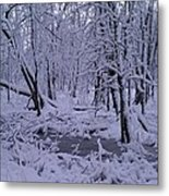 Frozen Forest Metal Print