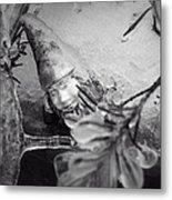 Frozen Gnome Black And White Metal Print