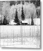 Frozen Lake Metal Print