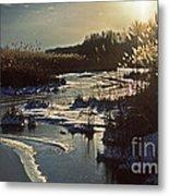 Frozen Marsh Metal Print