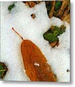 Frozen Nature - Digital Painting Effect Metal Print