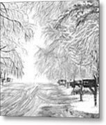 Frozen Rain  Metal Print