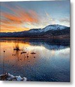 Frozen Reflections Metal Print