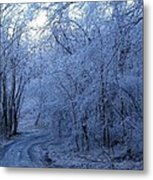 Frozen Road Metal Print