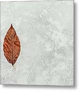 Frozen Seasons Metal Print