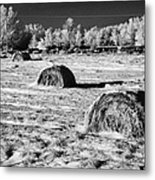 frozen snow covered hay bales in a field Forget Saskatchewan Canada Metal Print