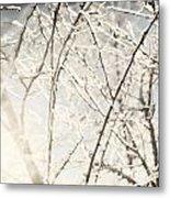 Frozen Tree Branches In Winter Metal Print