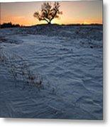 Frozen Tree Of Wisdom Metal Print