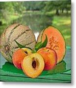Fruits-garden Metal Print