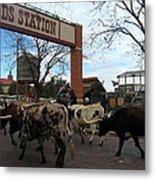 Ft Worth Trail Ride At Ft Worth Stockyard Metal Print