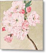 Fukurokuju - God Of Longevity - Vintage Watercolor Metal Print