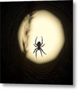 Full Moon And Spider Metal Print