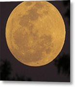 Full Moon II Metal Print