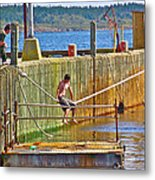 Fun At The Ferry Dock On Brier Island In Digby Neck-ns Metal Print