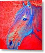 Funky Handsome Horse Blue Metal Print
