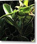 Fractal Nature South Carolina Green Lizard Metal Print