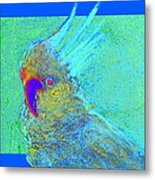 Funky Sulphur Crested Cockatoo Bird Art Prints Metal Print