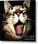 Maine Coon Cat Original Tongue Out Cute Kitty Portrait Funny Cool Animal Making Faces New Pet Gifts Metal Print