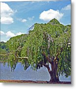 Furman Tree And Tower Metal Print
