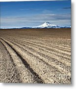 Furrows Metal Print
