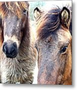 We Were The Most Furry Friends Metal Print