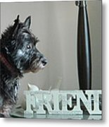 Furry Friends Metal Print