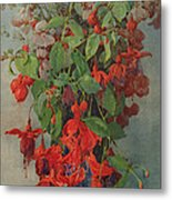 Fushia And Snapdragon In A Vase Metal Print
