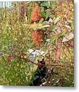 Fuzzy And The Reflected Tree Metal Print