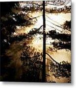 Fv5423, Perry Mastrovito Sunrise Though Metal Print